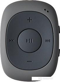 MP3 плеер Digma C2LG (серый) [367272]