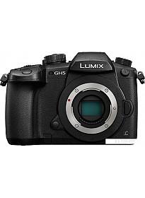 Фотоаппарат Panasonic Lumix DC-GH5 Body