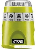 Набор бит Ryobi RAK10TSD (10 предметов)