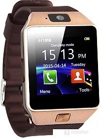 Умные часы Wise DZ09 (золотистый/коричневый)