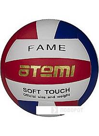 Мяч Atemi Fame