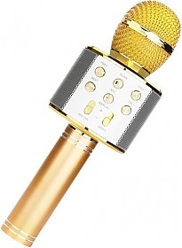 Микрофон Wster WS-858 (золотистый)