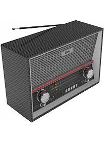 Радиоприемник Ritmix RPR-102 (карбон)