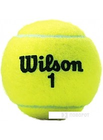 Мяч Wilson Championship Extra Duty WRT110000 (4 шт)
