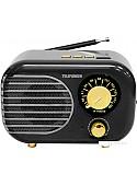 Радиоприемник TELEFUNKEN TF-1682UB (черный/золотистый)
