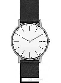 Наручные часы Skagen SKW6419