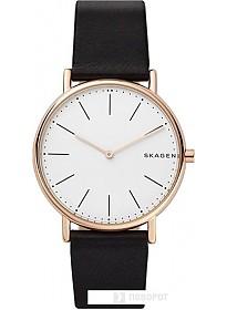 Наручные часы Skagen SKW6430