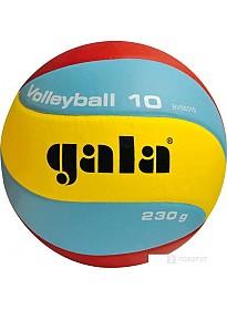 Мяч Gala Volleyball 10 (5 размер)