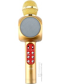 Микрофон Wster WS-1816 (золотистый)