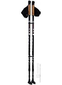 Палки для скандинавской ходьбы Gess Basic Walker GESS-919
