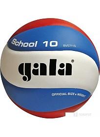 Мяч Gala School 10 BV5711S (5 размер)