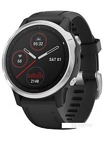 Умные часы Garmin Fenix 6s (серебристый/черный)