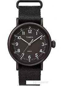 Наручные часы Timex TW2T20800