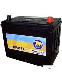 Автомобильный аккумулятор Baren Profi 7905694 (75 А·ч)