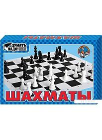 Шахматы Десятое королевство 01457