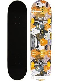 Скейтборд Atemi ASB31D01 31x8